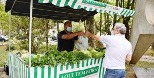 Feirante comercializa verduras na 'Feirinha da PJF' em Juiz de Fora (Foto: Carlos Mendonça).