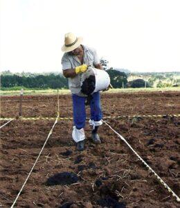 INDI trabalha para aumentar a produção de fertilizantes em Minas Gerais. (Foto: Embrapa)