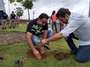 Voluntários já plantaram mais de 32 mil mudas nativas. (Foto: Projeto Plantar)