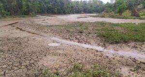 Região rural de Mantena sofre com estiagem. (Foto: Divulgação)